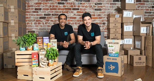 These Startup Founders Want You to Grow Your Own Shrooms