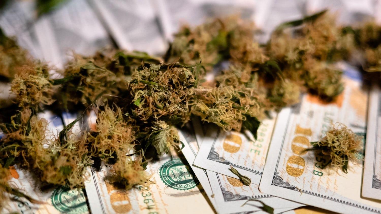 medical marijuana buds close up growing cannabis indoor hareves marijuana buds with money t20 eVwGN7
