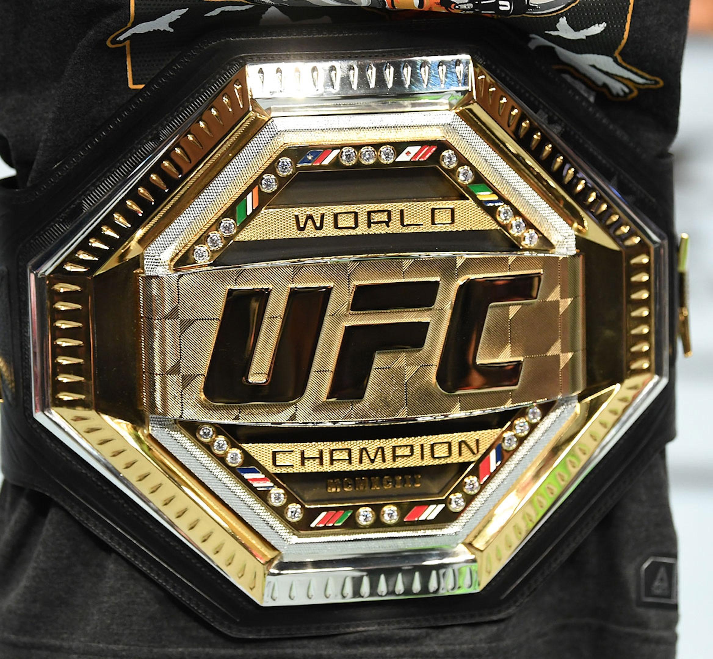 UFC champions hero