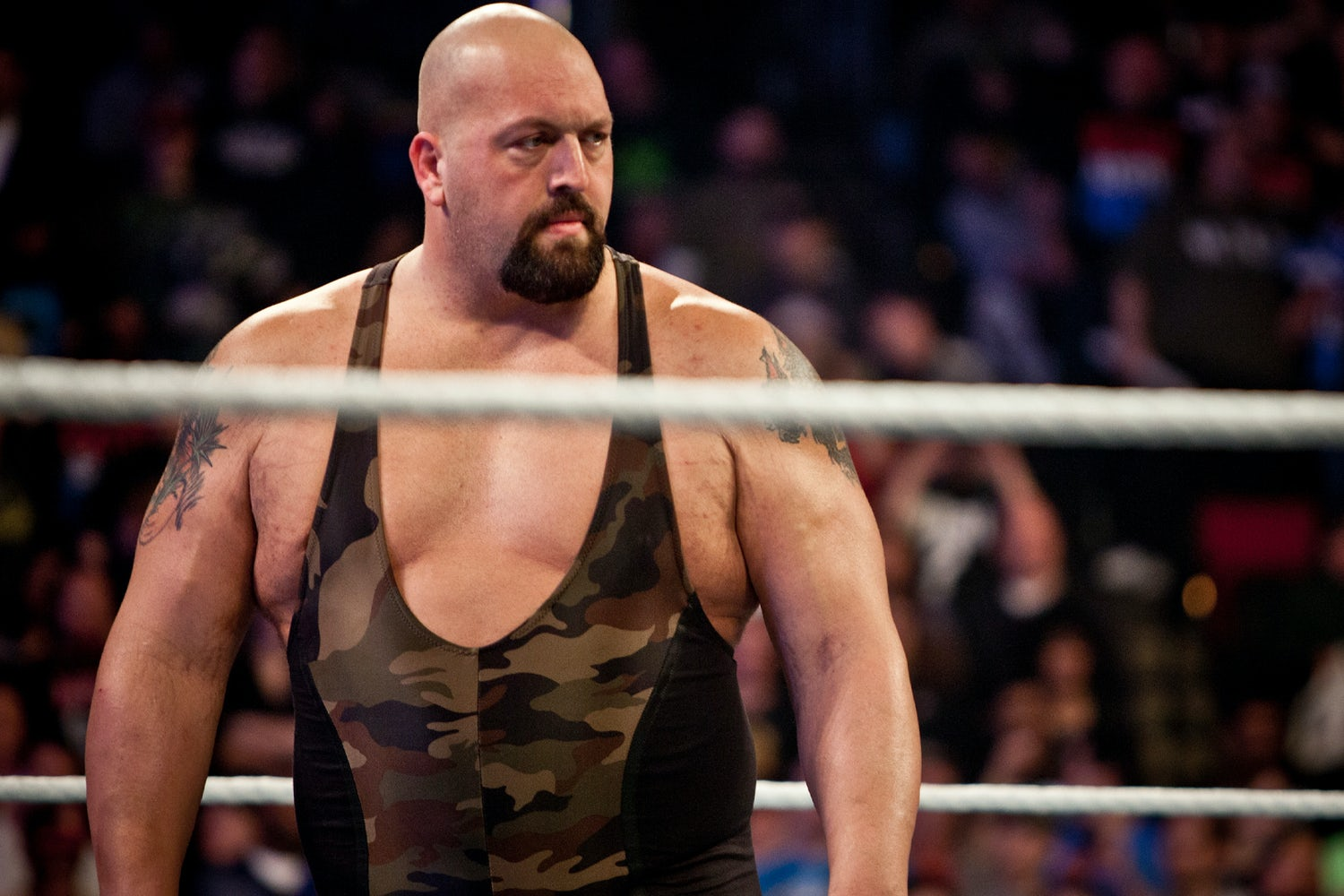 thebigshow