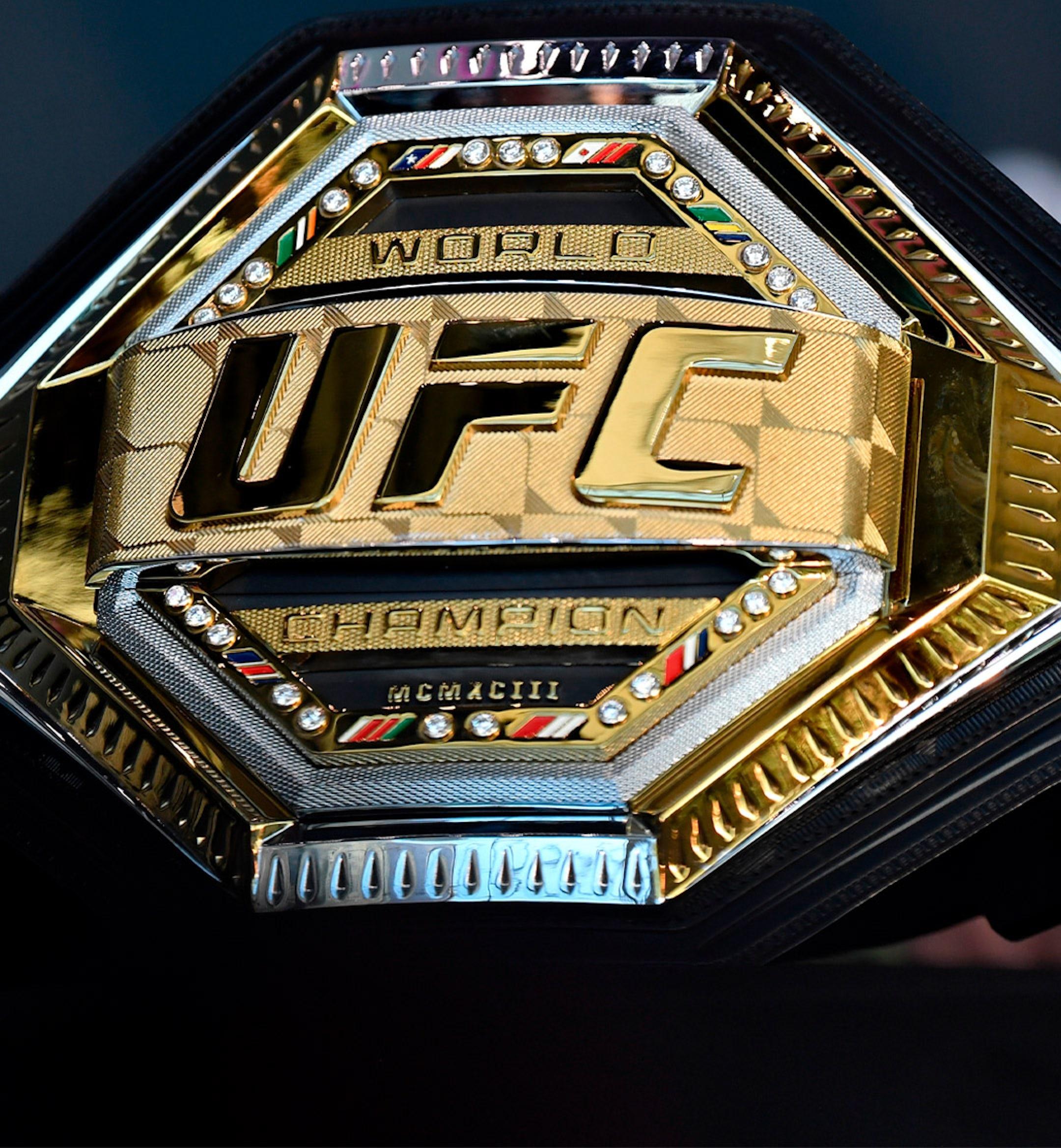 ufc heavyweight champion hero