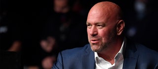 who owns the ufc hero